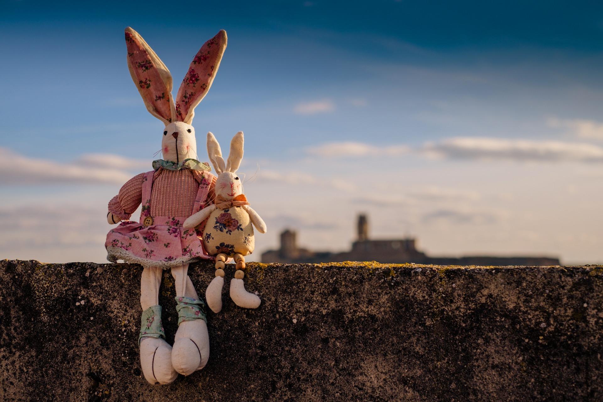 rabbit-1158594_1920